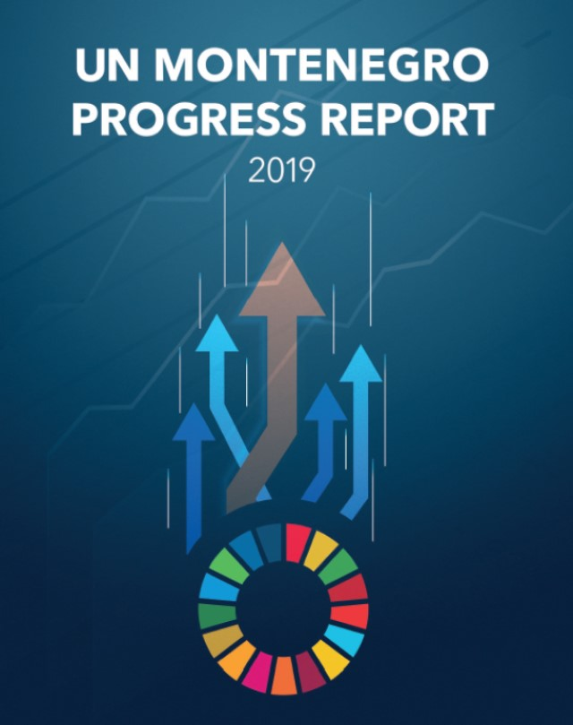 20200325_UN Progress Report