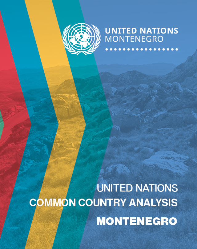 UN Common Country Analysis